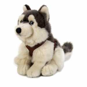 Lelly 742172 Peluche Lapo Siberian Husky, Seduto, Piccolo, Altezza 25 Cm