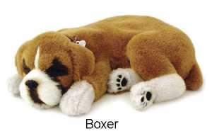 Cane Gatto Respira Boxer (8314)