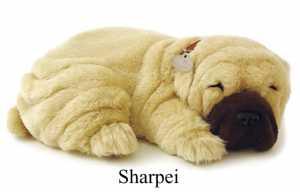 Cane Gatto Respira Sharpei (8314)