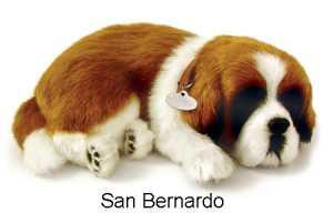 CANE GATTO RESPIRA SAN BERNARD - Luire' (8314)