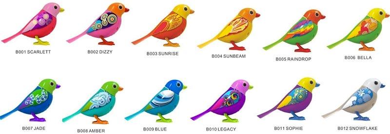 Quanti sono i Digibirds?